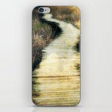 Path VI iPhone & iPod Skin