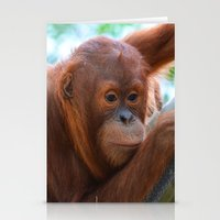 Orangutan Baby Stationery Cards