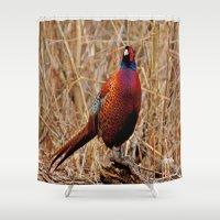 Pheasant Shower Curtain