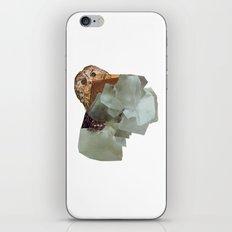 Cryptic iPhone & iPod Skin