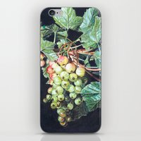 BLACK CURRANTS iPhone & iPod Skin