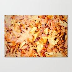 Autumn leaves on ground Canvas Print
