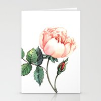Illustration with watercolor rose Stationery Cards