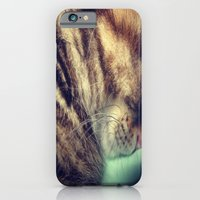 iPhone & iPod Case featuring Sleepy Kitten by  Alexia Miles photography