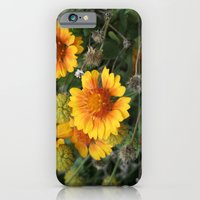 iPhone & iPod Case featuring A Full Cycle by halfwaytohear