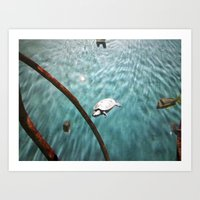 turtle Art Prints featuring TURTLE by JANUARY FROST