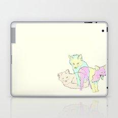 3 Channel Island Foxes Laptop & iPad Skin