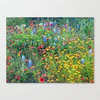 Natures colors Canvas Print