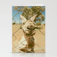 Kangaroo Stationery Cards