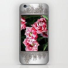 Double Late Peony-Flowered Tulip named Horizon iPhone & iPod Skin