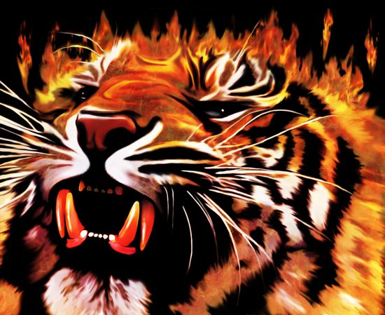 Fire Power Tiger Art Print