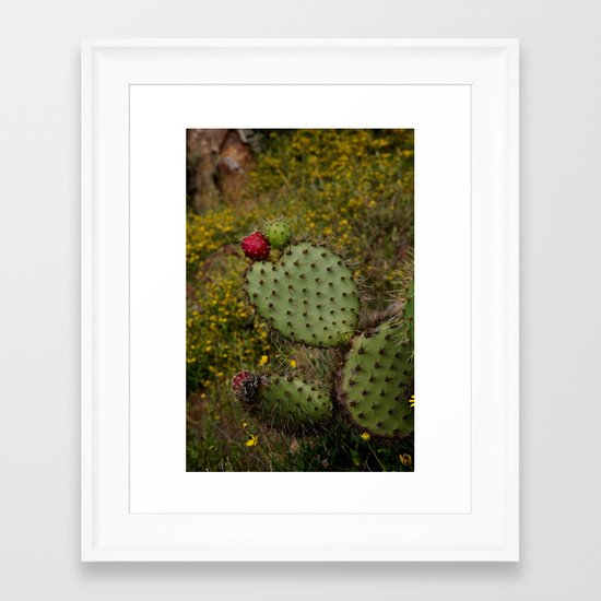 Baja: Love Cactus Framed Art Print