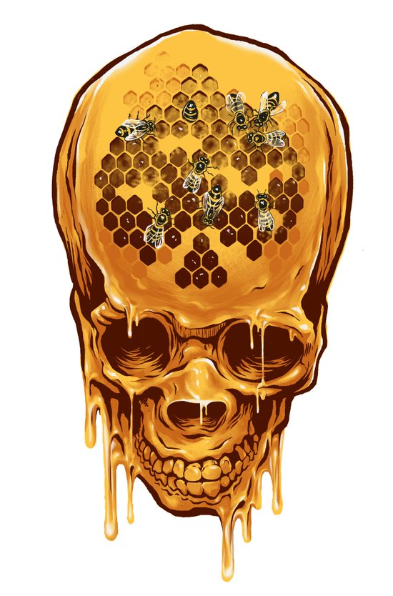 skull of honey Art Print