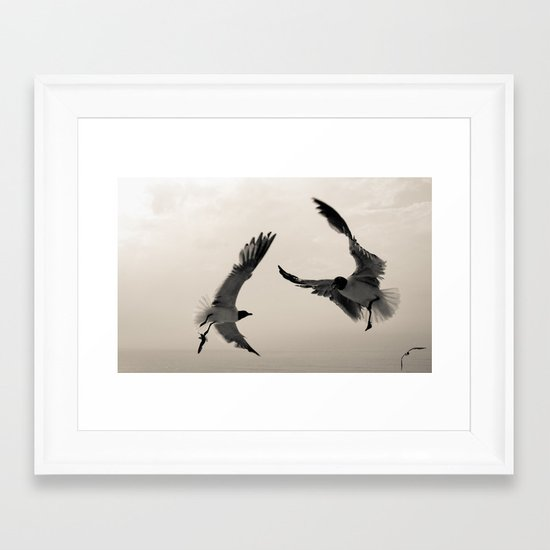 Gulls. Framed Art Print