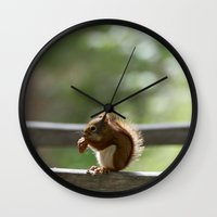 Red Squirrel Snack Time Wall Clock