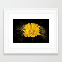 Beautiful Sunflower With… Framed Art Print