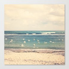 Swan Sea Canvas Print