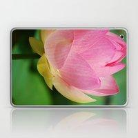 Lotus Blossom Flower 26 Laptop & iPad Skin