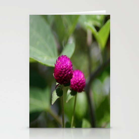 Encroachment Stationery Card