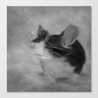 Hello, Sweet Mouse Canvas Print