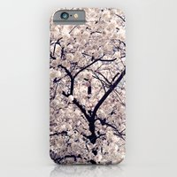 cherry blossom iPhone & iPod Cases featuring Cherry Blossom * by Neon Wildlife