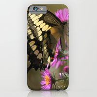 Giant Swallowtail (Papil… iPhone 6 Slim Case