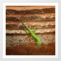 Lizard on Flowerpot Art Print