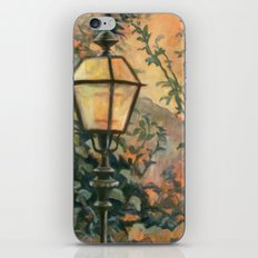 In A Lovely Place iPhone & iPod Skin
