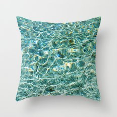 Silver Glen Springs, No. 3 Throw Pillow