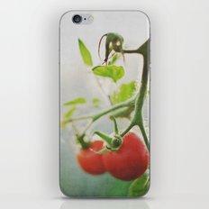 TOMATOES. iPhone & iPod Skin