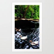 Three in a Row Art Print