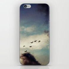 For Love of Sky iPhone & iPod Skin