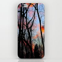 Sunset Through the Tangled Trees iPhone & iPod Skin