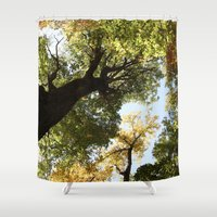 Fall Canopy - Woodland T… Shower Curtain