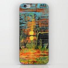 Sunset Walk iPhone & iPod Skin