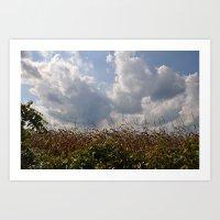 Harvest Landscape (Color Layers) Art Print