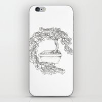 Ginkgo Tree iPhone & iPod Skin