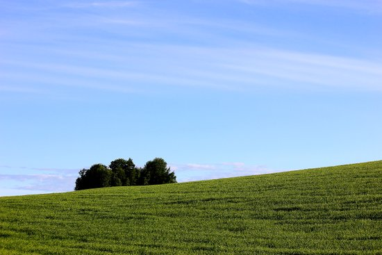 field and sky Art Print