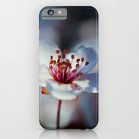 Spring Blossom iPhone 6 Slim Case