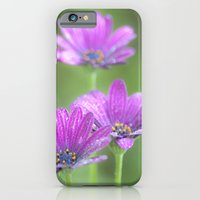iPhone & iPod Case featuring Comos Flowers by Clive Eariss