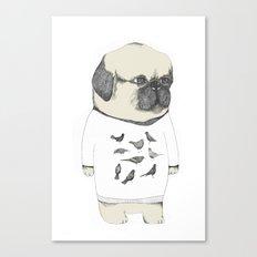 kinotto pug Canvas Print