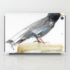 Australian Starling iPad Case