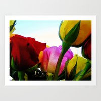 Colorful Roses Art Print