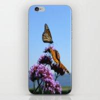 velvet butterflies iPhone & iPod Skin