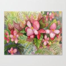 Begonia Beauty Canvas Print