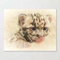 CUTE CLOUDED LEOPARD CUB Canvas Print