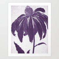 Purple Petals Art Print
