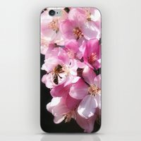 The Taste Of Spring iPhone & iPod Skin