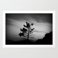 Melancholy Tree Art Print