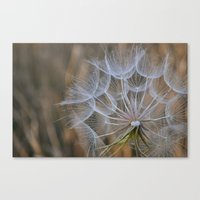inside one wish Canvas Print
